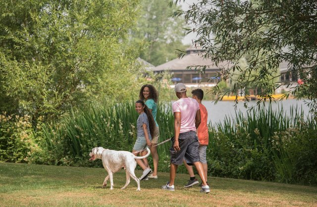 Dog-Friendly Holiday Parks UK | Hoburne Holidays